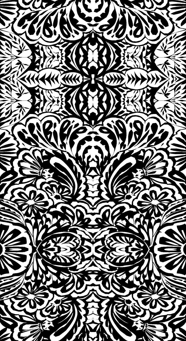 c-7942 preto e branco.jpg