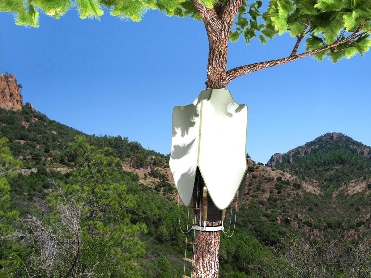 The Tree Nest