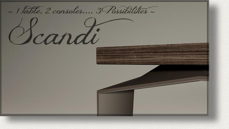 Erohe-du-Azac-Art-table-scandi-console-elegante-metal-iron-canon-de-fusil-gunmetal-bois-wood-cantilever-scandinave-scandinavian-design.jpg
