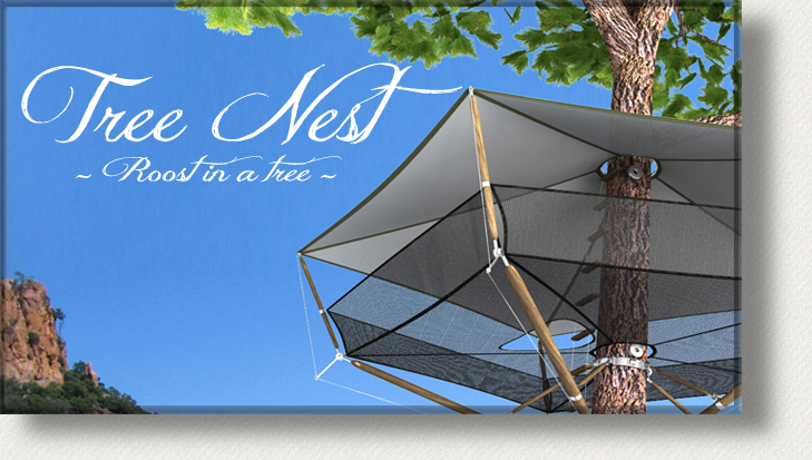 Erohe-du-Azac-tree-nest-cabane-treehouse-arbre-simple-elegant-roost-view-vue-epiphyte-epiphytic.jpg