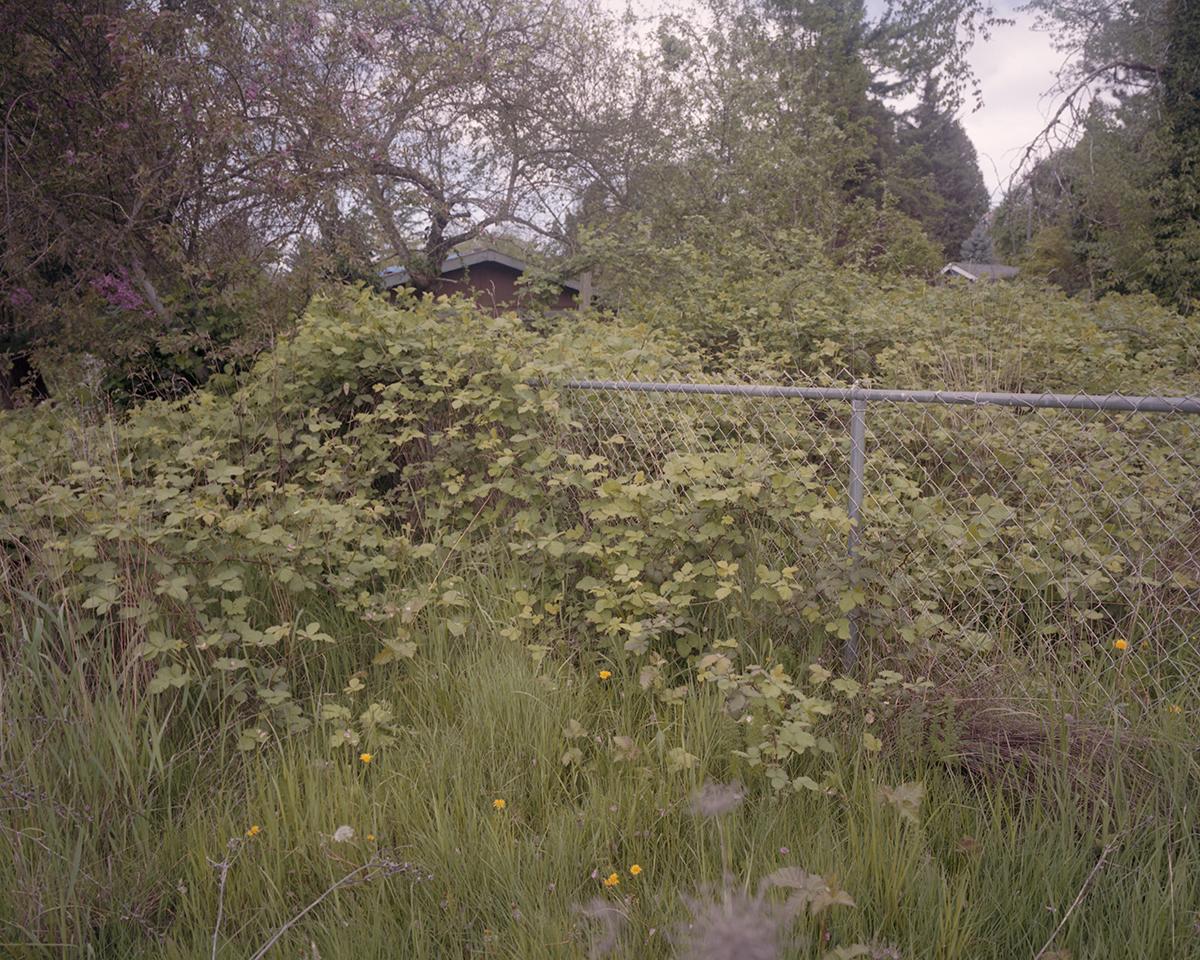 Portland2019001.jpg