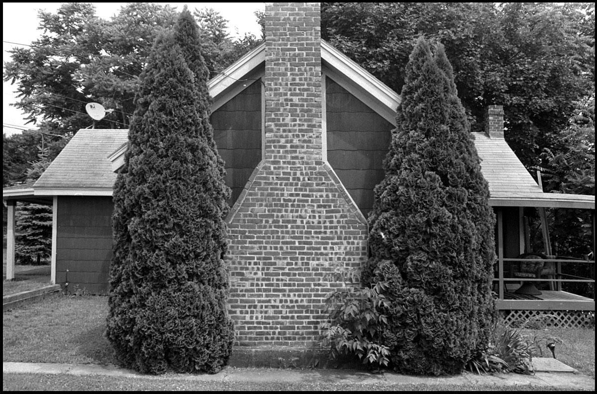 Two Trees | Philmont, NY