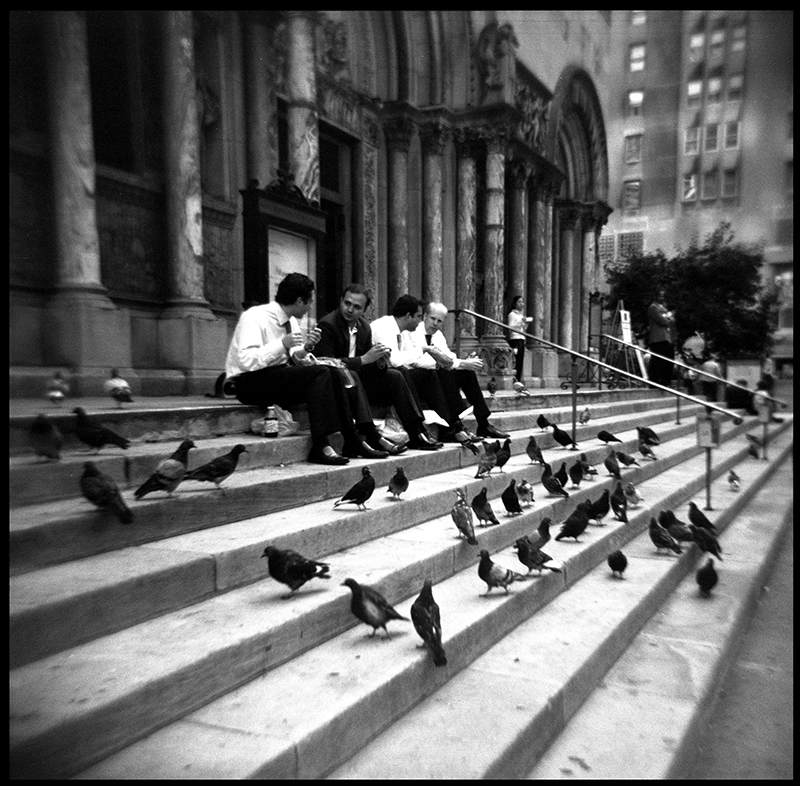 Lunch with Pigeons | Park Avenue