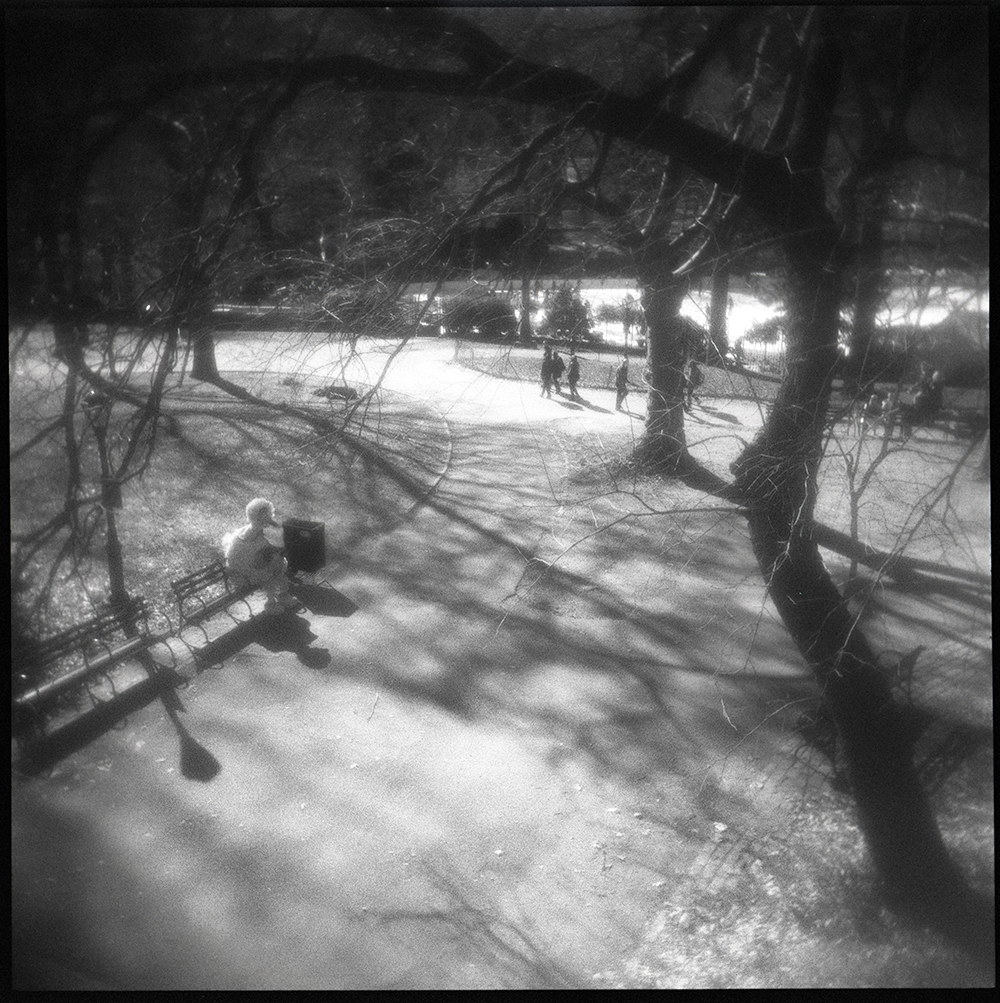 Big Bird | Central Park, New York NY