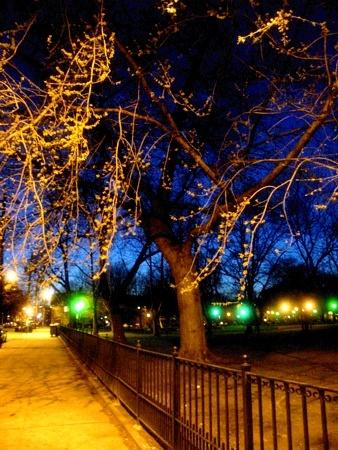 Early Evening Tape Walking | Jersey City, NJ