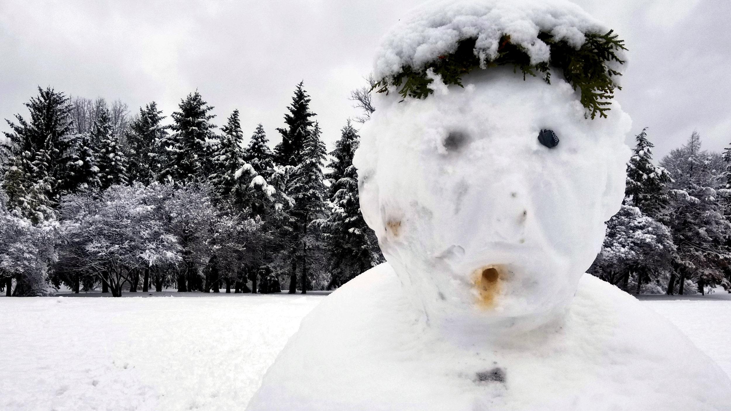 The Snowman | Washington Park, Albany NY