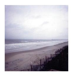 polaroid95.jpg