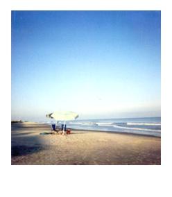 polaroid131.jpg