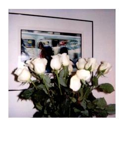 polaroid196.jpg