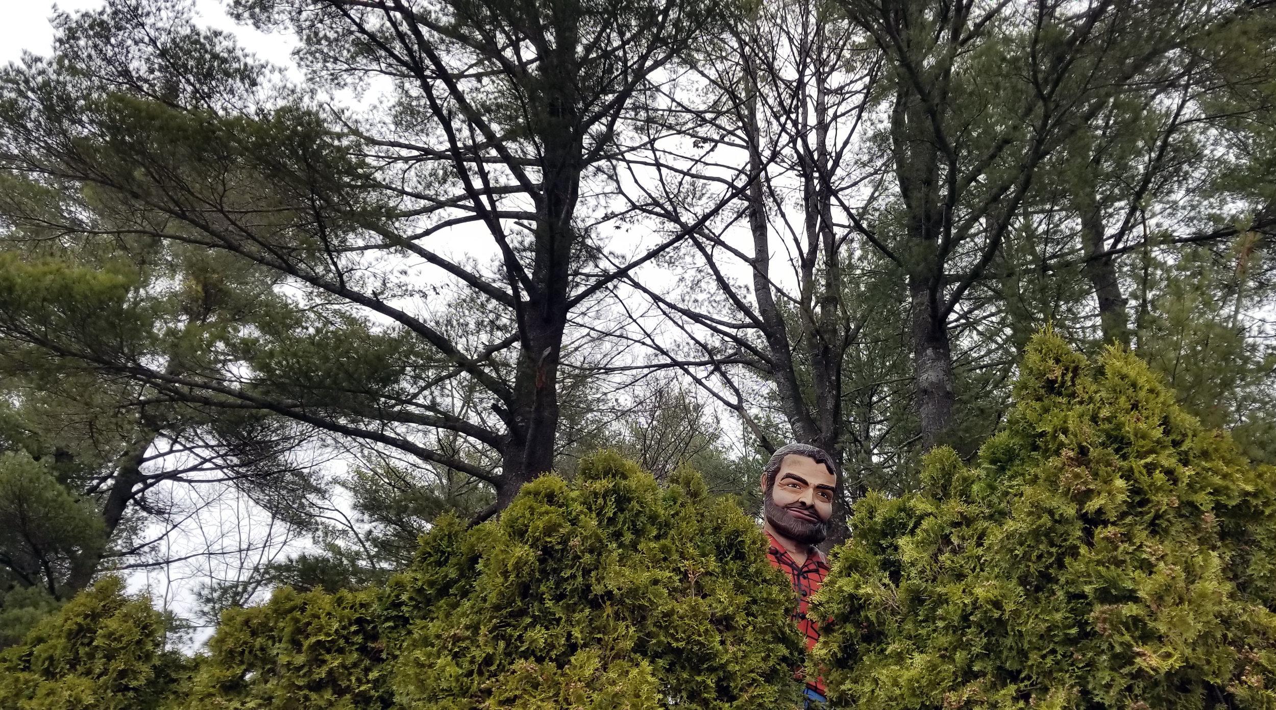 Lumberjack in the Magic Forest | Lake George, NY