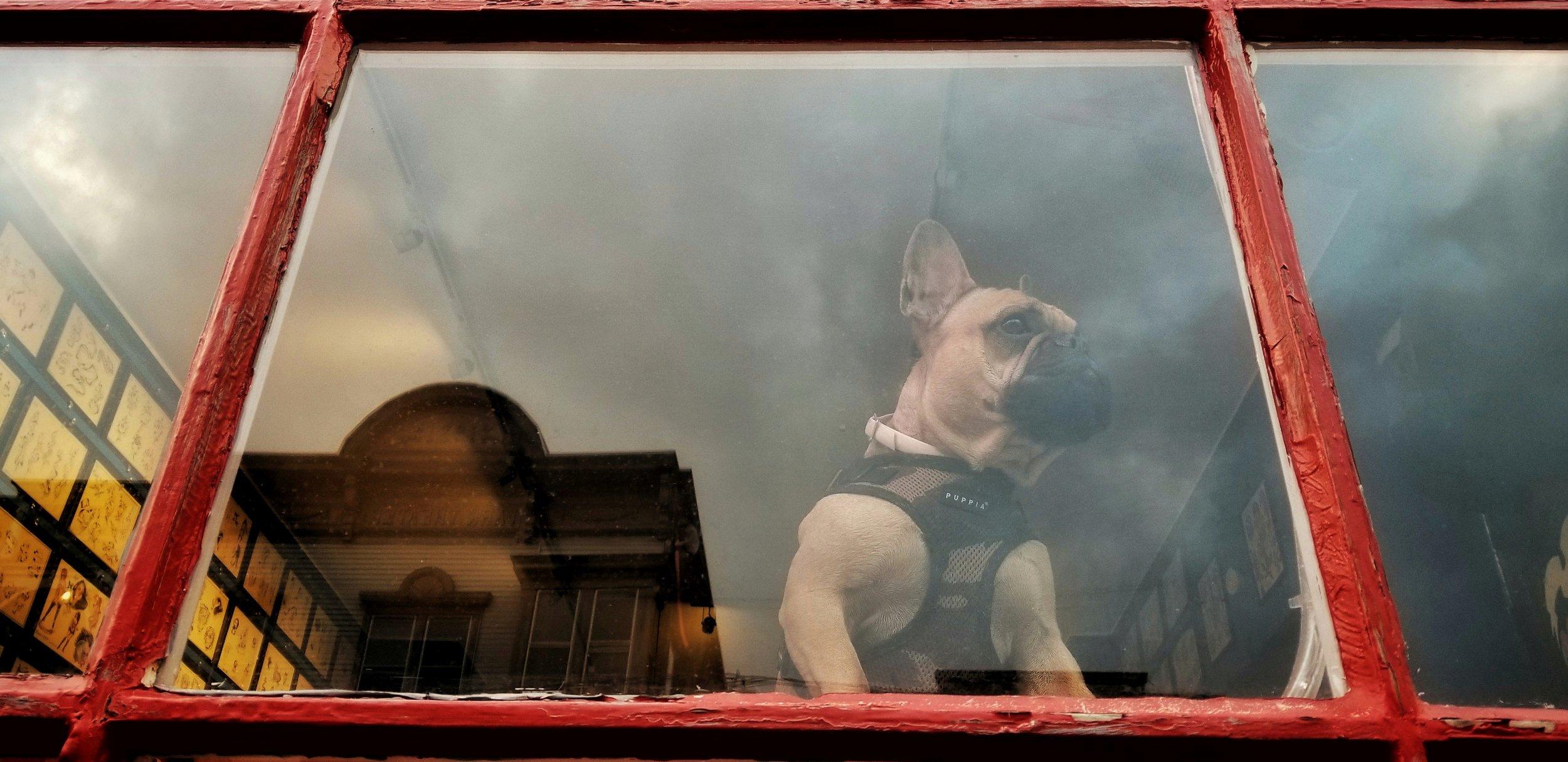 Neighborhood Watch | Hudson NY Hudson