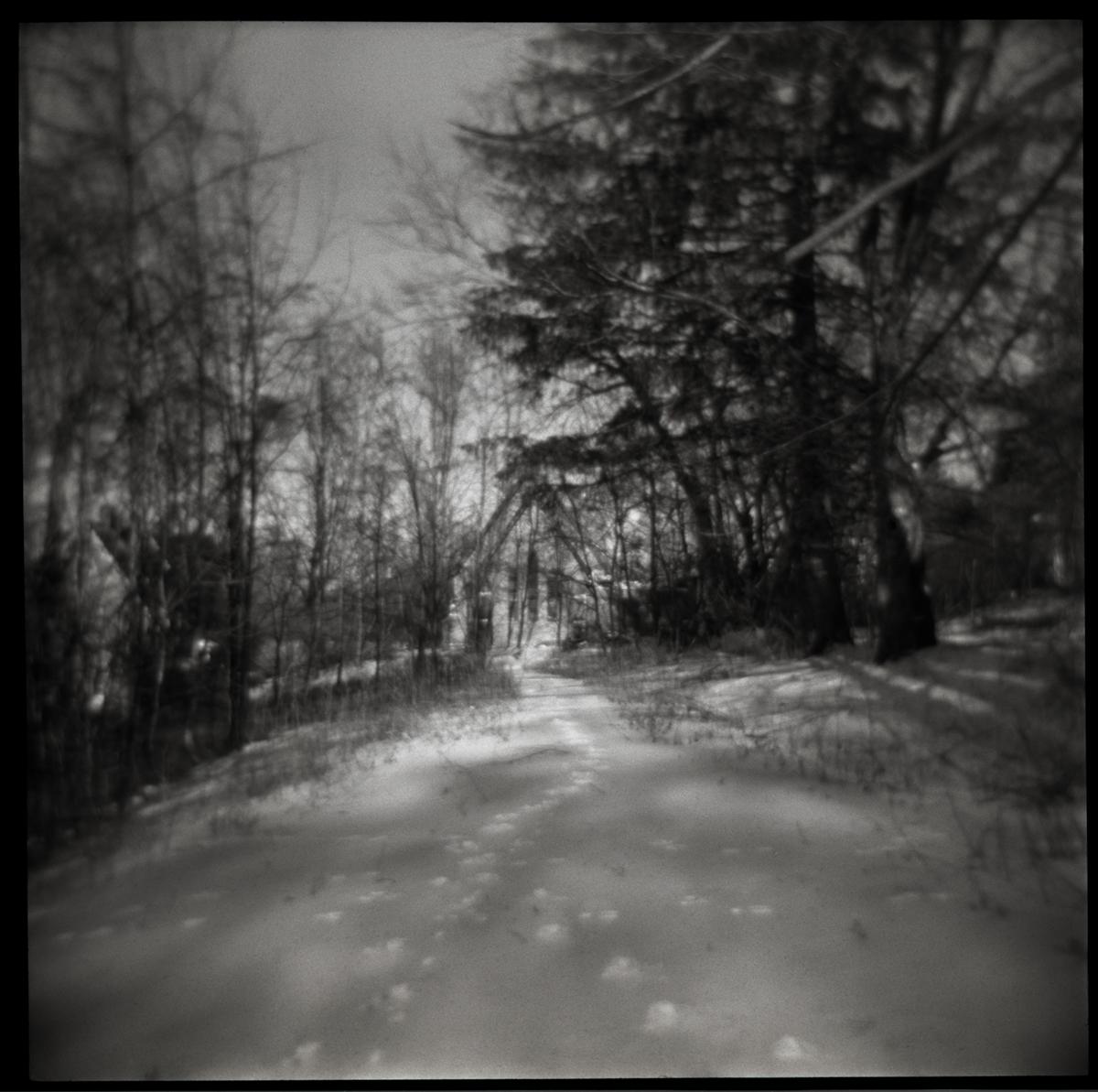 Tracks | Sharon Springs, New York