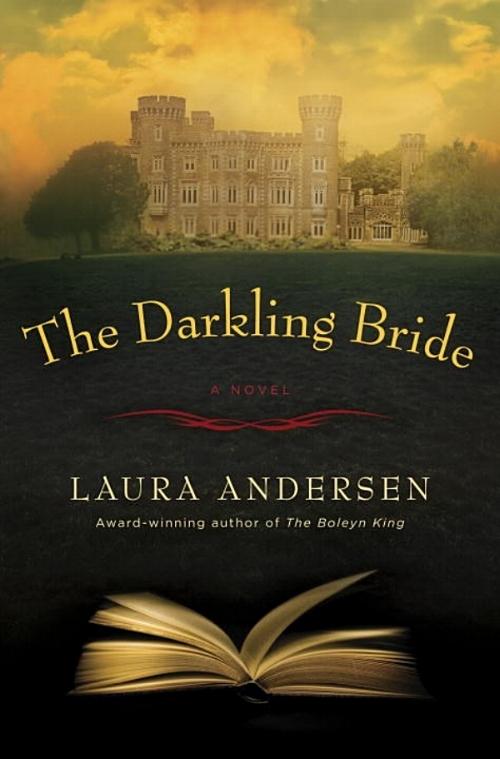 The Darkling Bride by Laura Andersen Book Cover