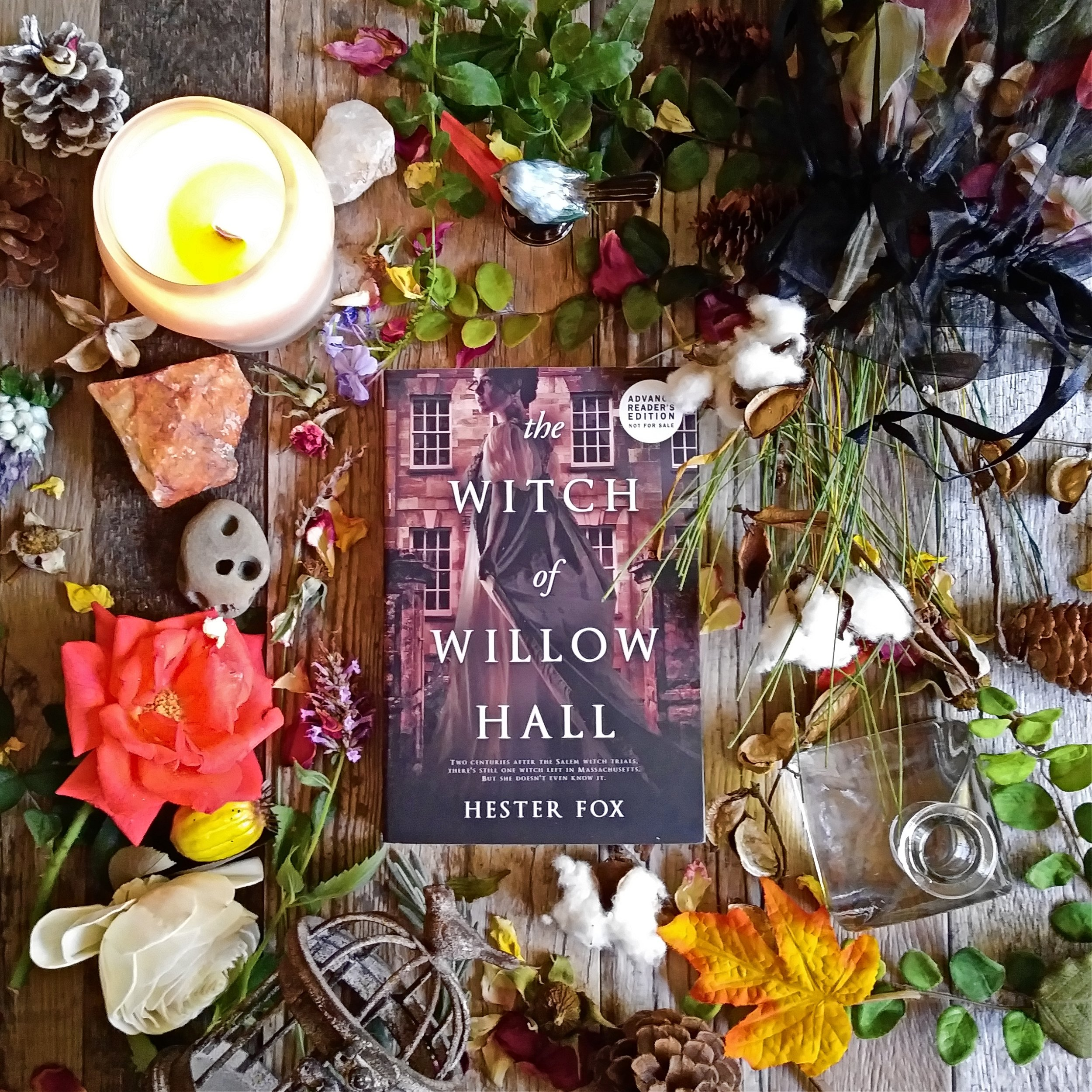 The Witch of Willow Hall Square by Hester Fox 20180913_122054.jpg