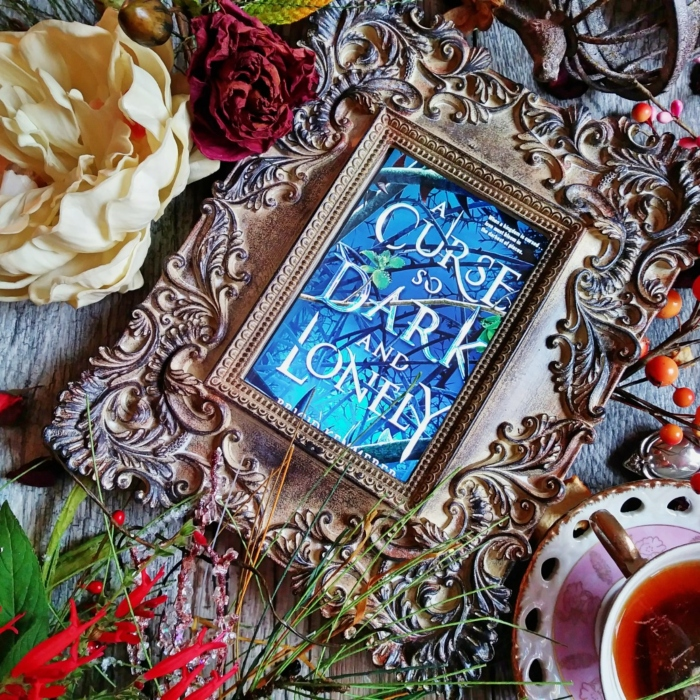 A Curse So Dark and Lonely by Brigid Kemmerer, image taken by Book Swoon.