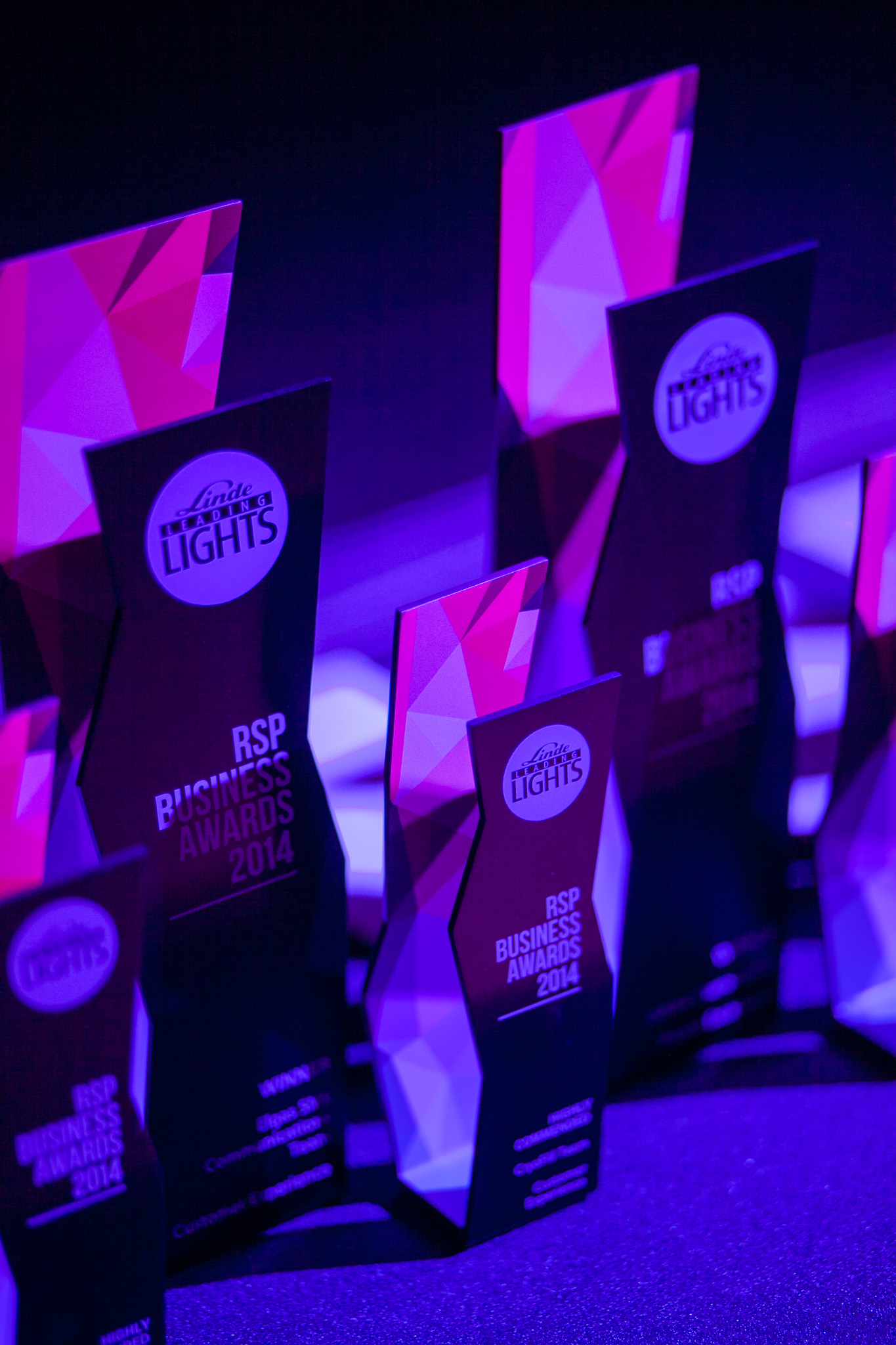 rsp business awards - leading lights custom trophies