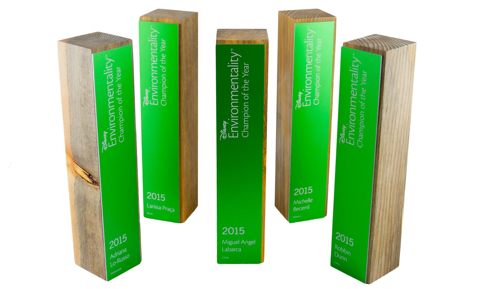 disney awards beetlewood beetle wood denim pine.jpg