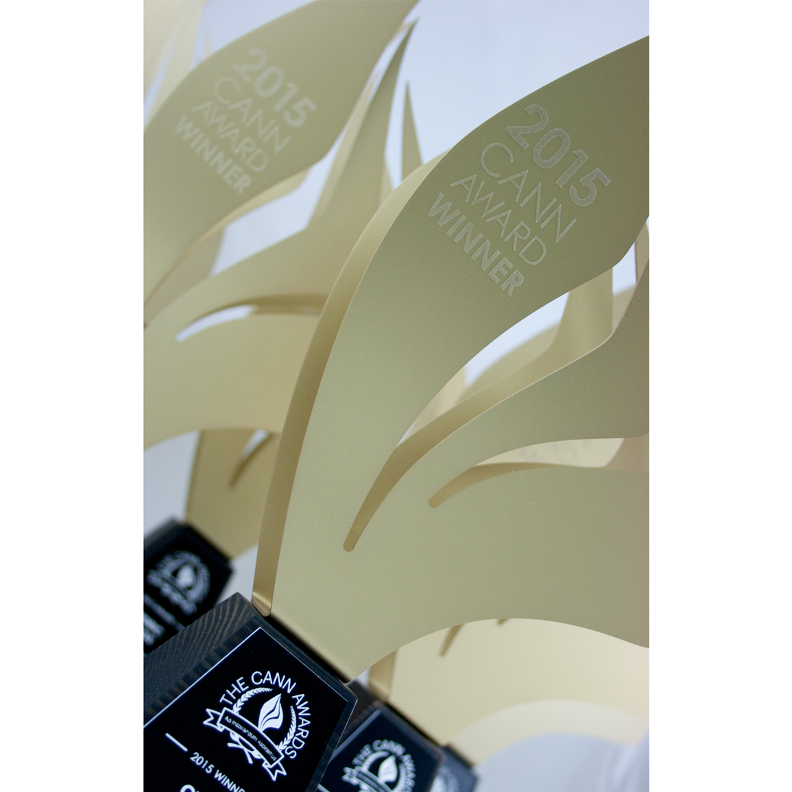 custom eco sustainable trophy design award teacher recognition