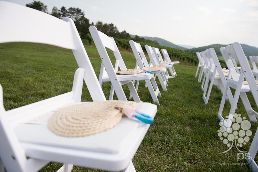 PS Davis Pippin Hill vineyard wedding-1002.jpg