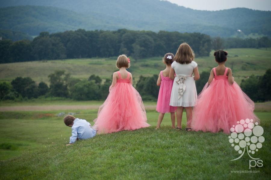 PS Davis Pippin Hill vineyard wedding-1017.jpg