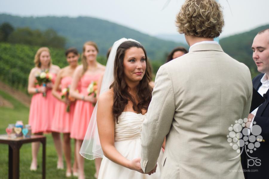 PS Davis Pippin Hill vineyard wedding-1011.jpg