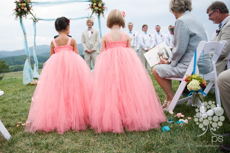 PS Davis Pippin Hill vineyard wedding-1010.jpg