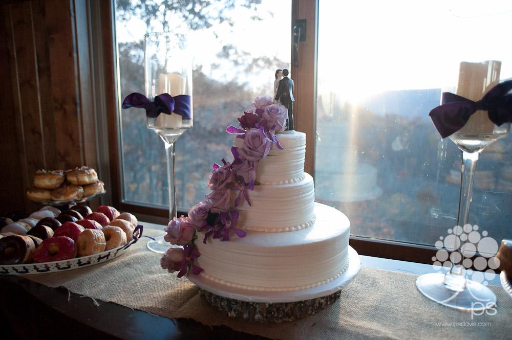 Mountain House Inn Lexington wedding-1012.jpg