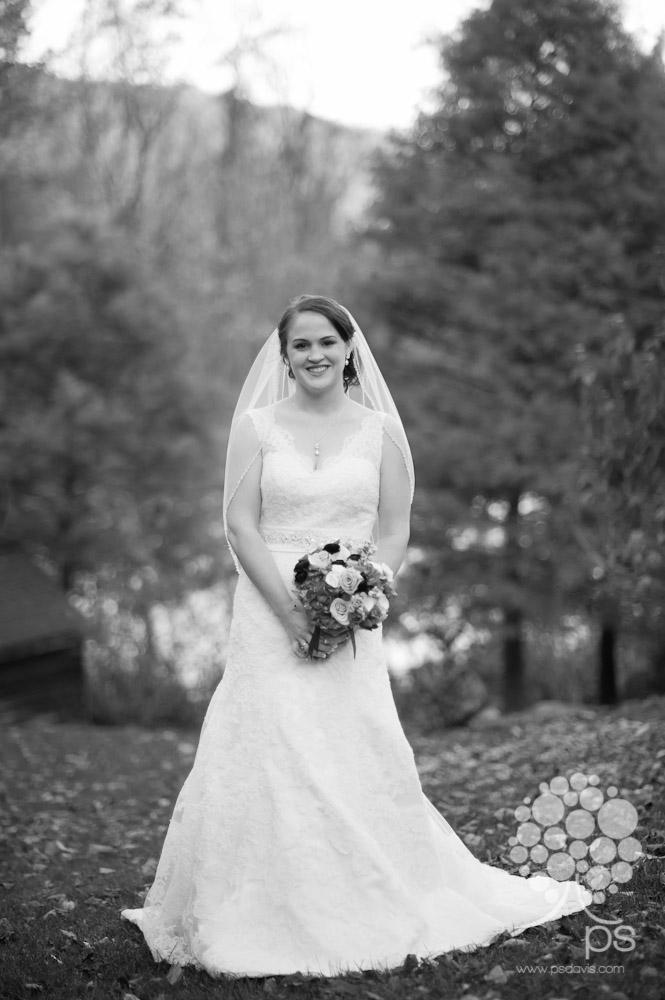 Mountain House Inn Lexington wedding-1027.jpg