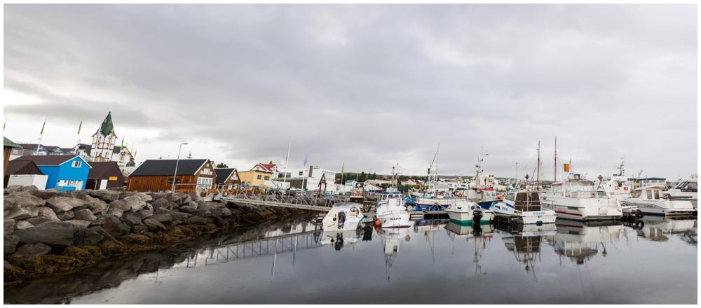 August Iceland Ring Road Trip_0015.jpg