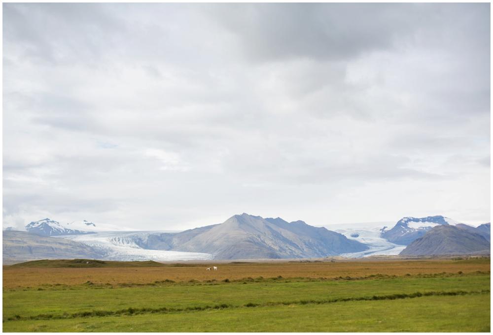 August Iceland Ring Road Trip_0056.jpg
