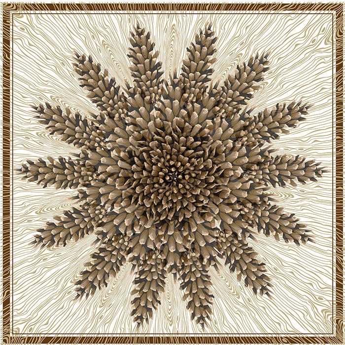 Adirondack Star, Q. Cassetti 2013  Trumansburg, NY, Adobe Illustrator CC
