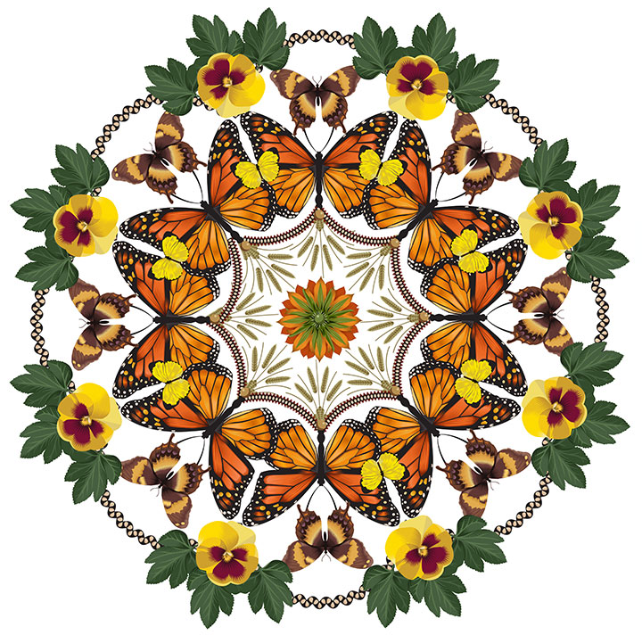 Butterly Wreath, Q. Cassetti, 2014, Trumansburg, NY, Adobe Illustrator