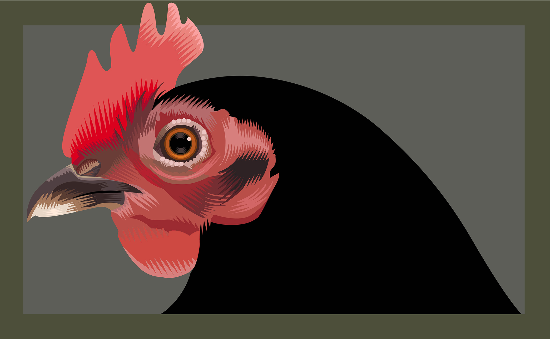 Gallina Q. Cassetti 2015 Adobe Illustrator 2015