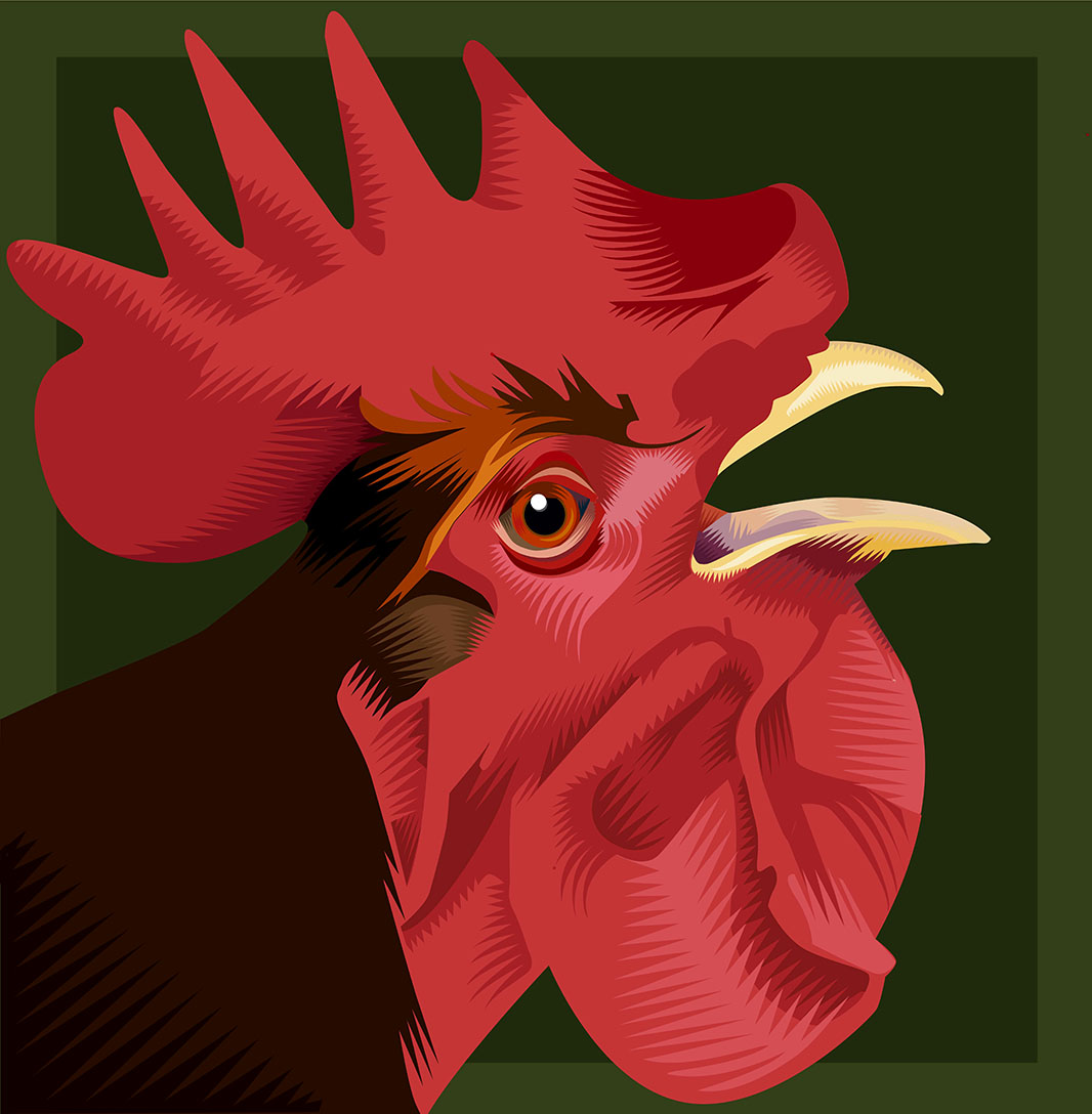 Something to Crow About Q. Cassetti 2015 Adobe Illustrator 2015