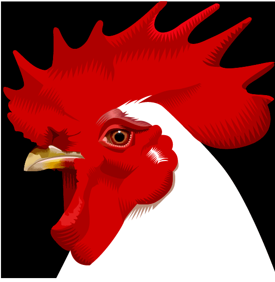 whitechicken.png