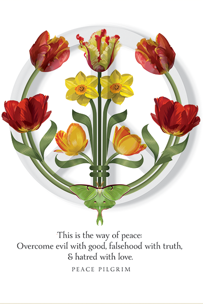 Week Twelve of the Resistance  Q.Cassetti 4.14.2017 Peace should be the focus during this holy week for many--not strife, hate or angst. Love is a good resistance.