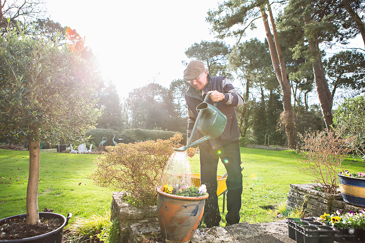 Senior man watering flowers in garden, Bournemouth, UK  © Masterfile