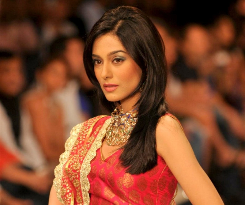 Amrita Rao will be seen as Amitabh Bachchan's daughter in law in  Satyagraha