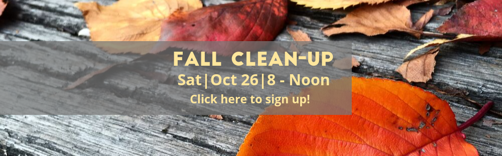Copy of Fall Clean Up-4.png