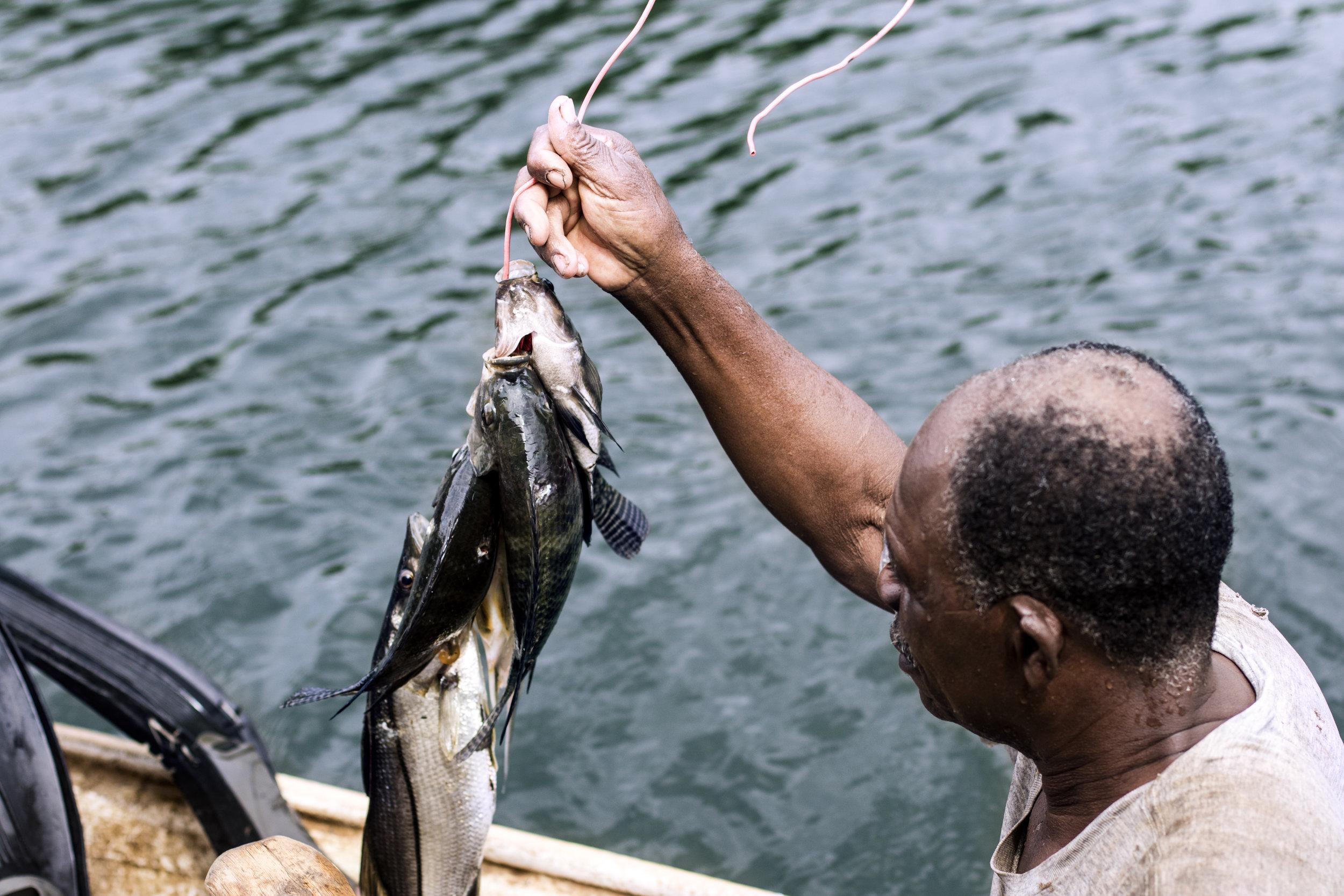 fiskare.jpg