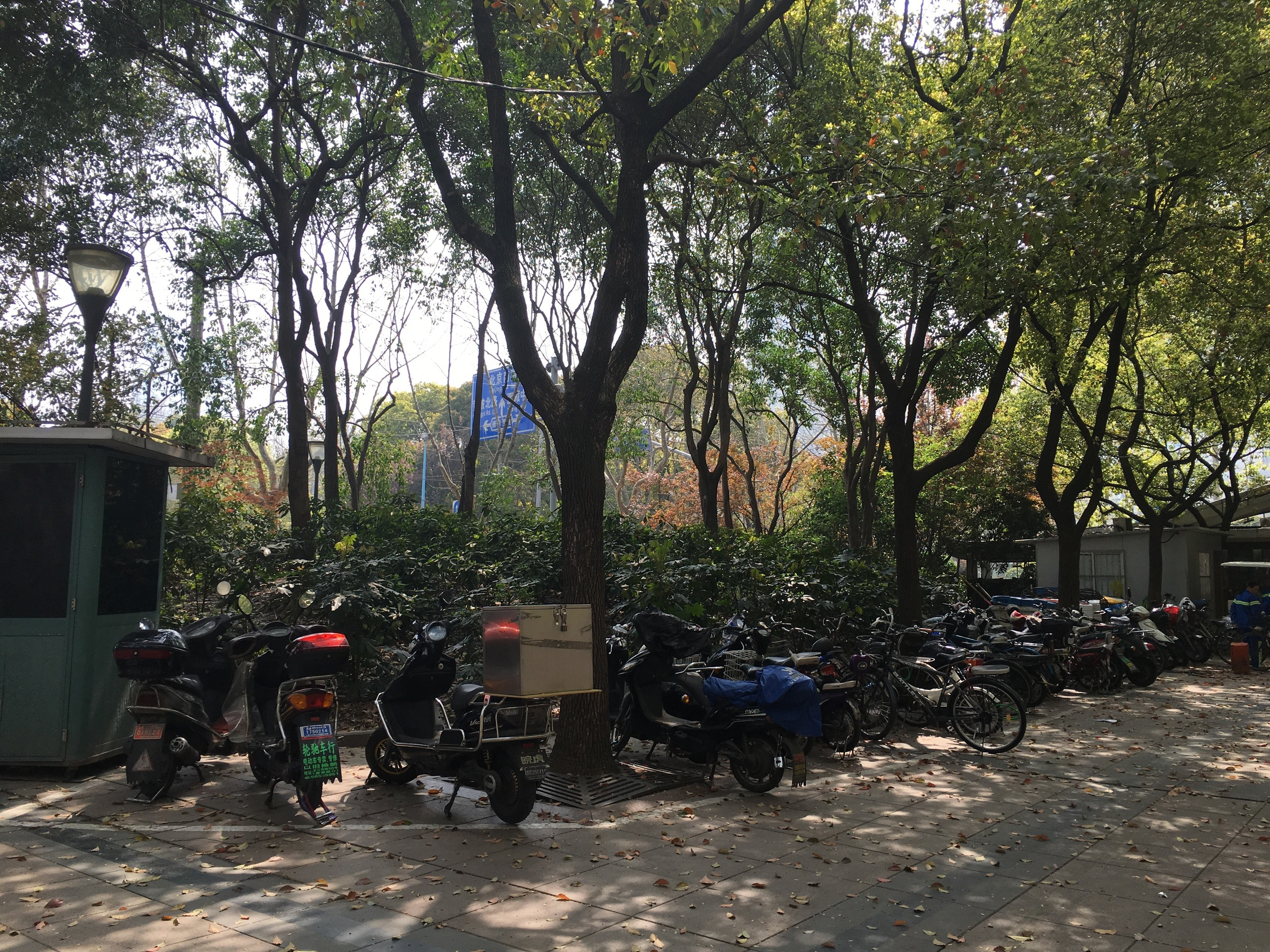 Lots of mopeds/bikes