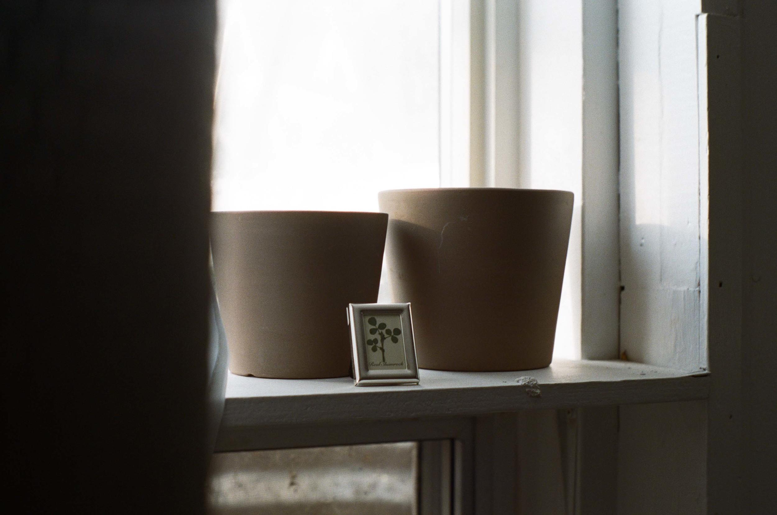 shelf_shamrock_natural_light_35mm_film_window_lauren_ashmore