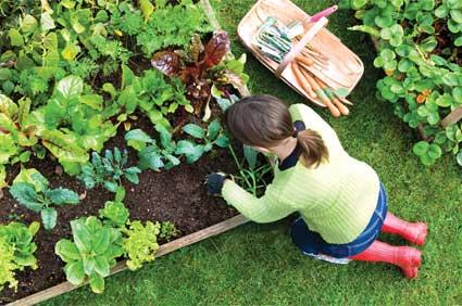 garden-workshop.jpg