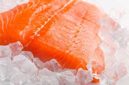 Salmon-view-all.jpg