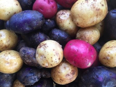 mixpotatoes.jpg
