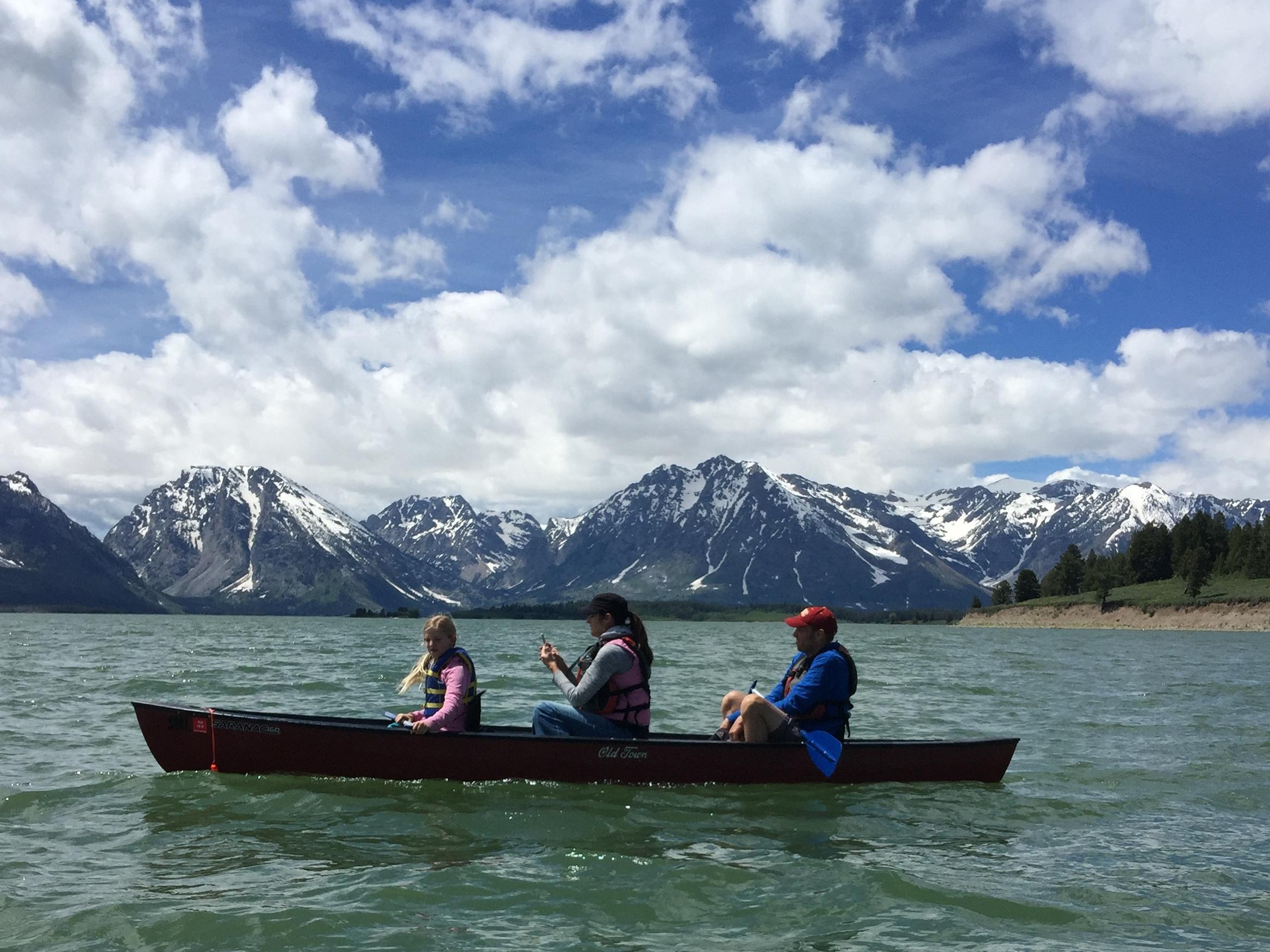 The D's - Jackson Lake - GTNP