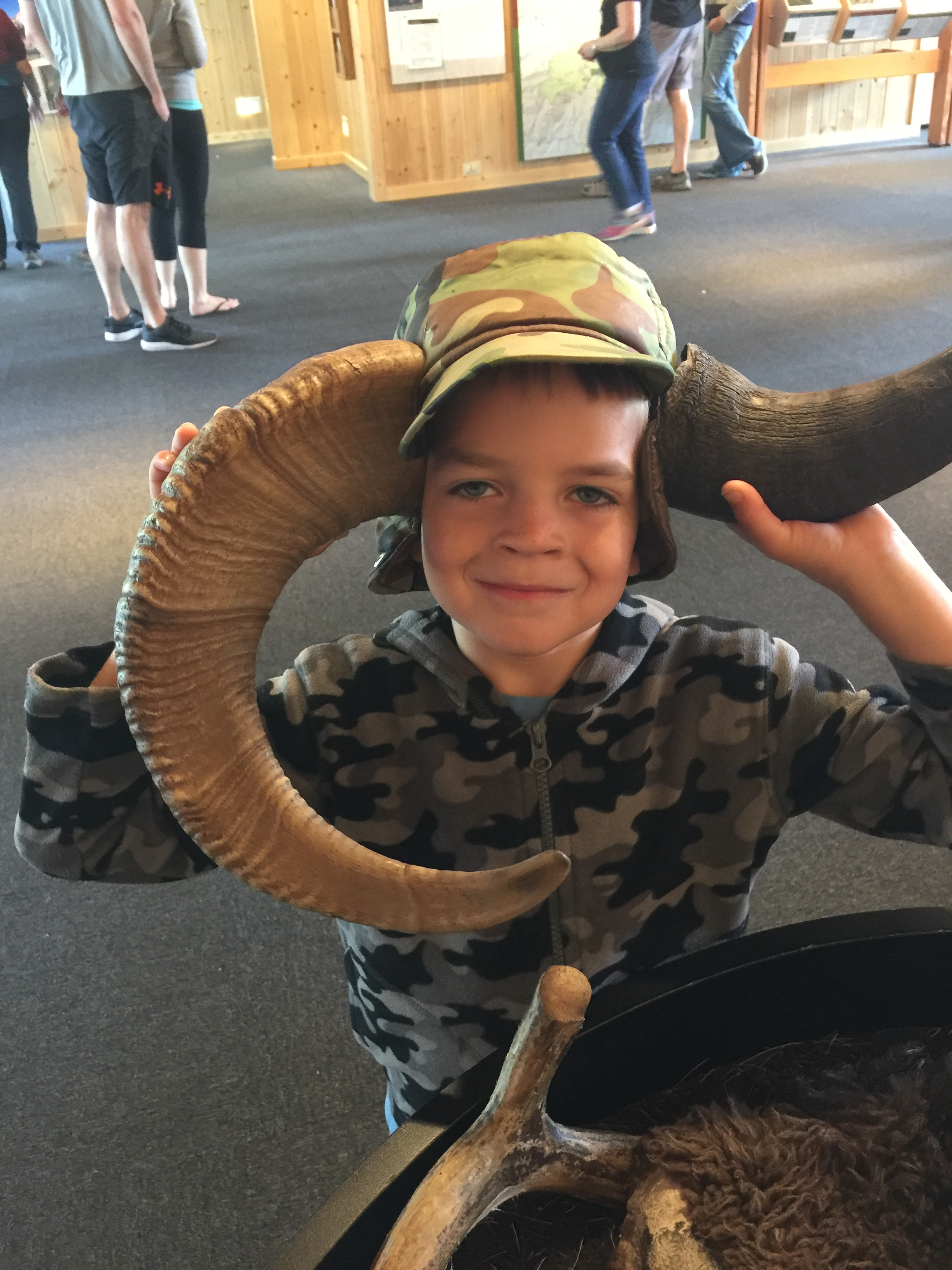 Deciding whether to be a bighorn sheep or a bison.  Coulter Bay Visitor Center - GTNP