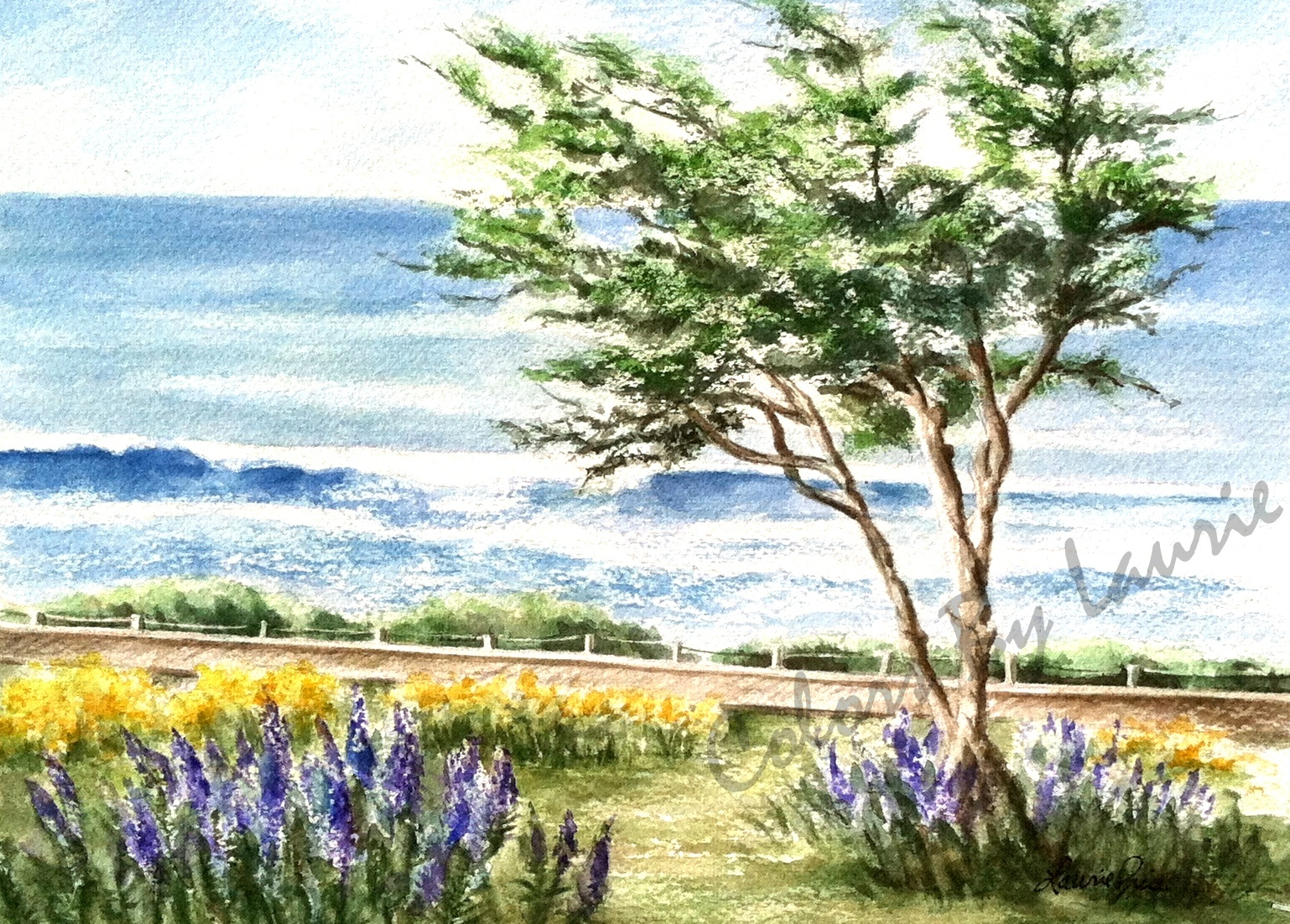CAMBRIA BOARDWALK - Moonstone Beach Drive - SIZE: 5 X 7