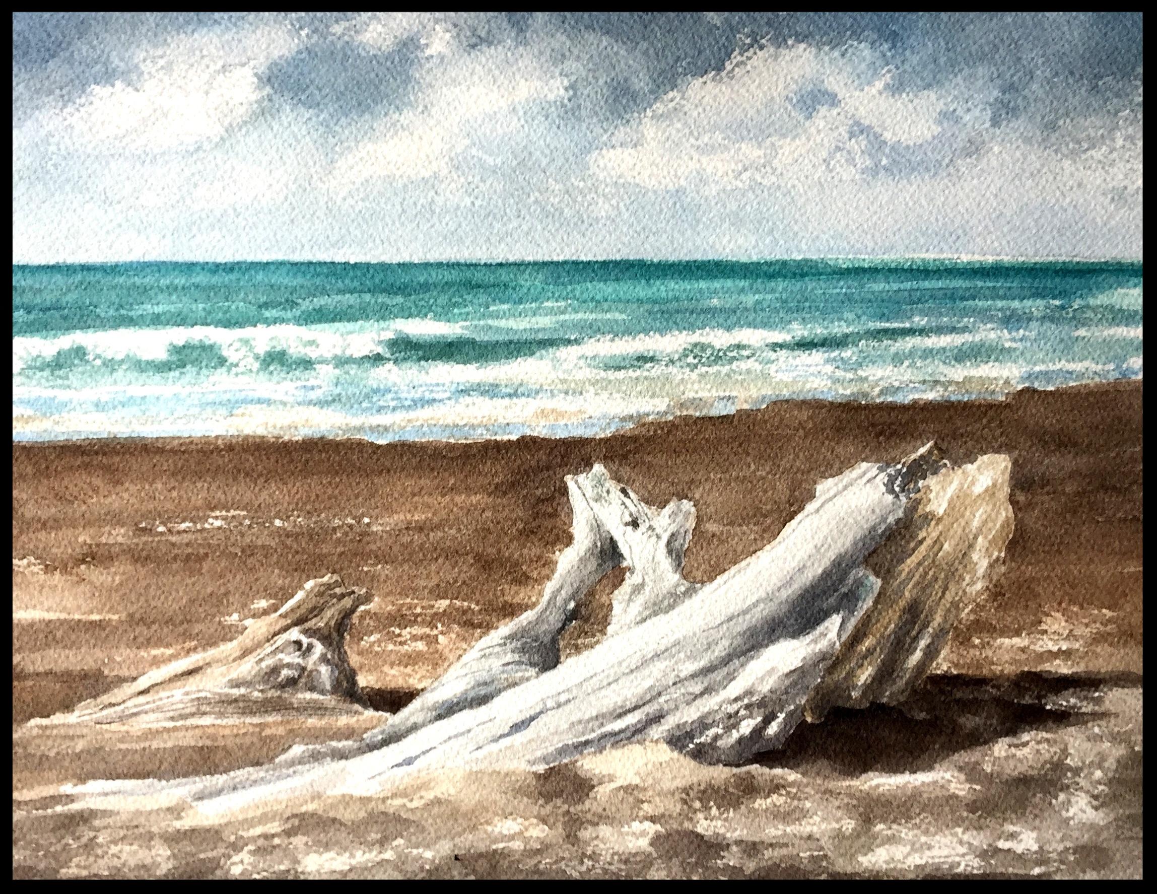 MOONSTONE BEACH DRIFTWOOD