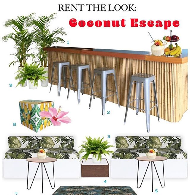 """A new """"Rent the Look"""" is on the blog - based on our fun coconut escape happy hour we did in December, it includes our new line of tropical pieces, personalized boxes with pineapple designs from @madewithbind and lush plants from @rosesetpivoines 🌴🏝🏝🏝🍍"""